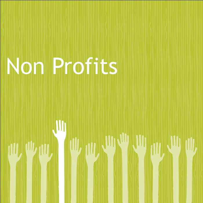 Business Credit Cards For Non Profit Organizations Choice Image ...